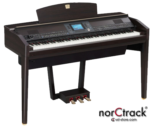 yamaha psr a1000 style voice. Black Bedroom Furniture Sets. Home Design Ideas